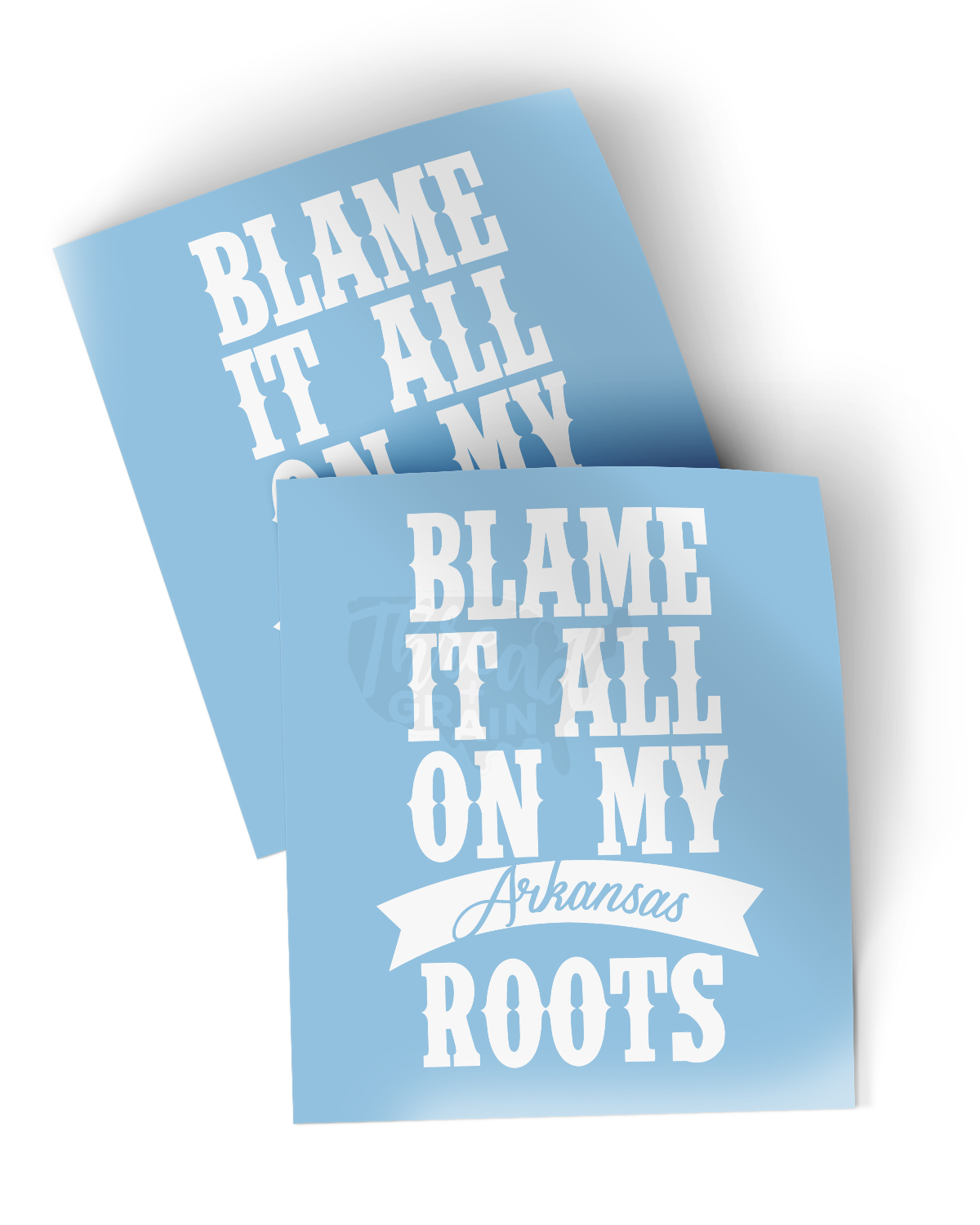 Arkansas :: Blame It All On My Roots DECAL